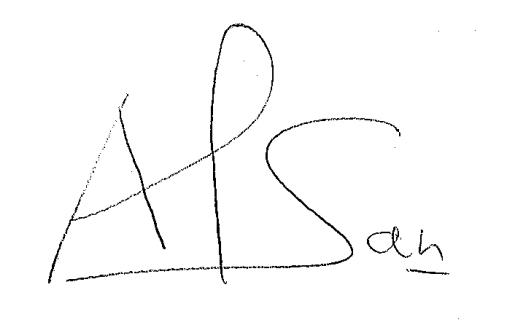 Firma Antonio Álvarez